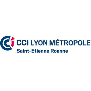 cci-lyon-saint-hesilma-cabinet-conseil-audit-formation-hotellerie-restauration-tourisme-services-activites-loisir-faisabilite-etude-de-marche