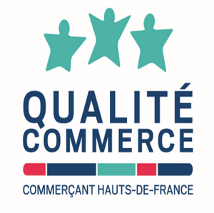 qualite-commerce-hesilma-cabinet-conseil-audit-formation-hotellerie-restauration-tourisme-services-activites-loisir-faisabilite-etude-de-marche