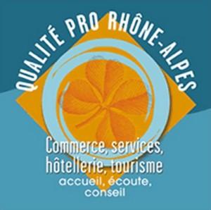 qualite-pro-rhone-alpes-hesilma-cabinet-conseil-audit-formation-hotellerie-restauration-tourisme-services-activites-loisir-faisabilite